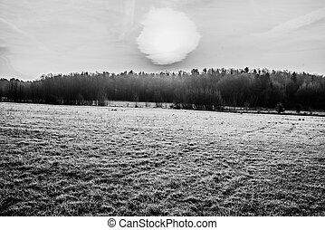 Völtendorf im Winter - Schwarz/Weiß-Aufnahme mit direktem...