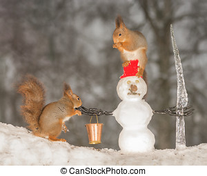 snowmans company - red squirrels with snowman which has a...