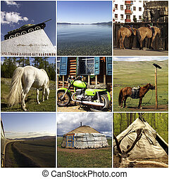 Mongolian lifestyle - Composition of Mongolian lifestyle...