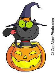 Halloween cat - Black Witch Cat Sitting Inside Of A Pumpkin...