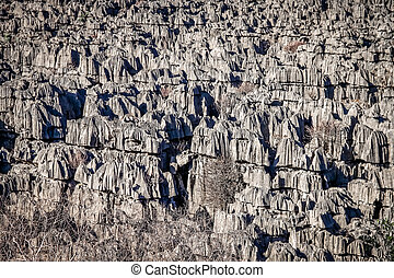 Tsingy close up - Tsingy rock formations in Park National...