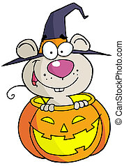 Halloween mouse - Happy Mouse In A Carved Halloween Pumpkin...