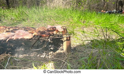 Barbecue in nature, summertime - Rustic barbecue in nature,...