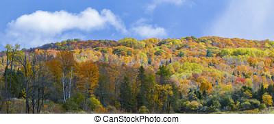 colorful mountain - Wide section of a mountain showing...