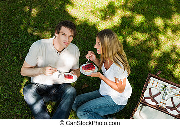 Picnic outdoors in summer