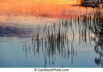 Reflected sunset on the water - Photo of reflected sunset on...