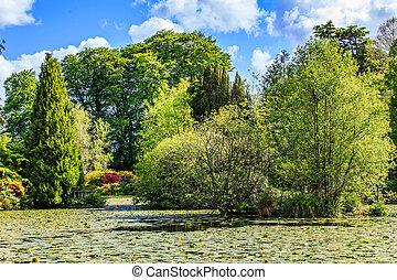 Altamont garden in Ireland - Landscape photo of Altamont...