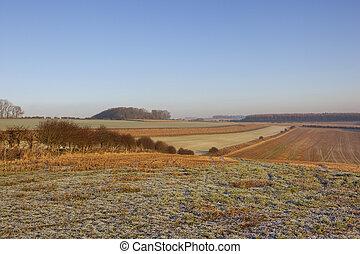 frosty wolds landscape - a frosty winter yorkshire wolds...