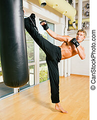 Martial Arts Kick - Kickboxer kicking the sandbag