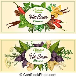 Hot spices, seasonings, spicy herbs vector banners - Hot...