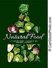 Natural food poster of leafy salad greens - Leafy salad...