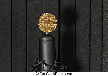 Studio microphone on mic stand