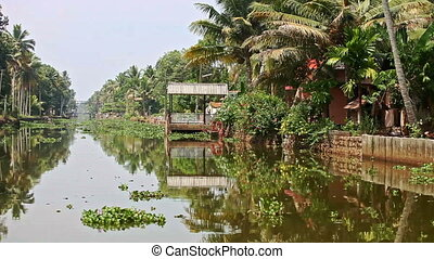Slow Motion along River with Water-plants by House in...