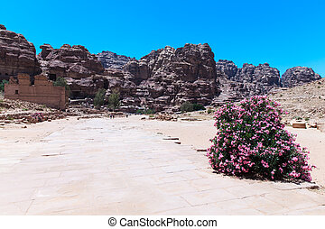 Jordanian desert at Petra