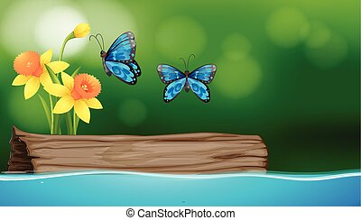 Two butterflies flying over the river