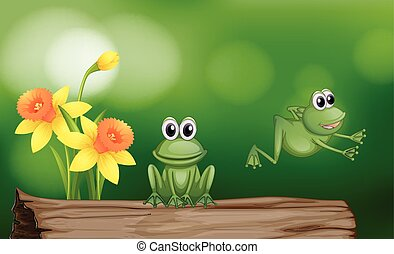 Two green frogs on the log illustration