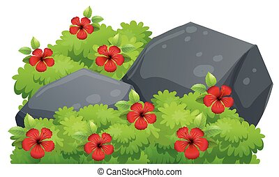 Red hibiscus flowers in the bush