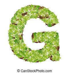 Letter G alphabet with hydroponics leaf ABC concept type as...