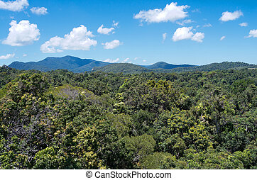 Barron Gorge Rainforest and Ridges - aerial from skyrail...