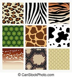 It is a pattern collection of animal skin. Including snake, deer tiger turtle giraffe cow zebra leopard.