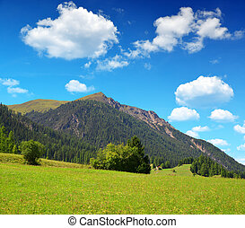 Canton Graubunden in Switzerland - Beautiful Alpine...
