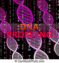 Dna Profiling Means Genetic Fingerprinting 3d Illustration