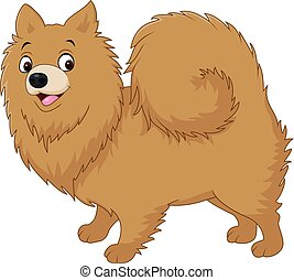 Cartoon dog pomeranian husky - Vector illustration of...