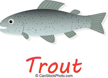 Fresh Trout fish in flat style, vector design