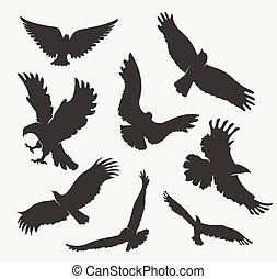 silhouette flying eagle on white background - vector set...