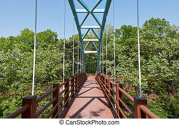 Cable-stayed pedestrian bridge