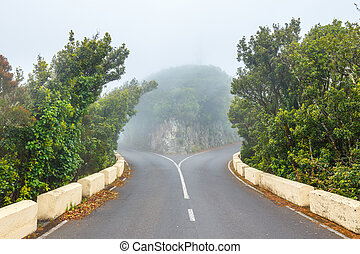Mountain road at cloudy day with green trees