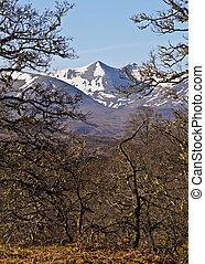 Scottish Highlands near Roy Bridge - UK, Scotland,...