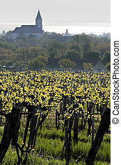 Vineyards and village church at Lake Balaton - Vineyards and...