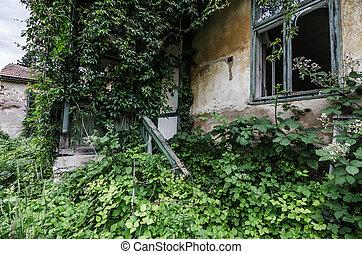 overgrown villa - overgrown old villa with garden
