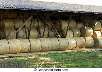 Straw bales - Storage hall for many straw bales