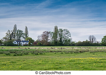 Rural Cambridge on a sunny day - Rural Cambridgeshire during...