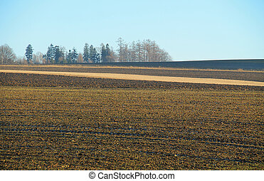 ploughed field with dark and light stripes of various types...