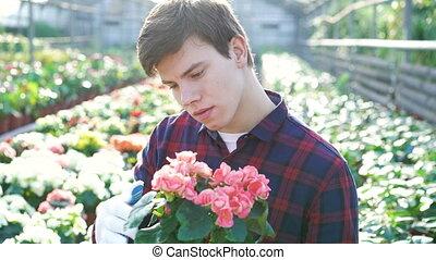 Gardener examining flowers in gardenhouse 4K.