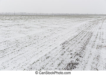 Winter landscape with snow covered countryside.