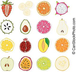 Set of fresh hand drawn exotic fruits