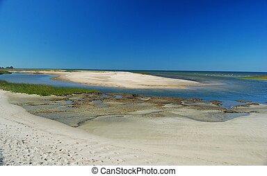 Shoreline of Wellfleet Bay in Cape Cod.