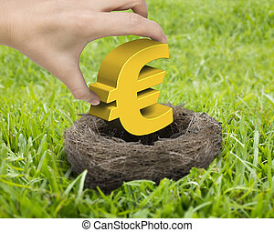 Woman hand holding golden Euro symbol in nest on the meadow.