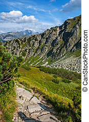 Hiking in the Polish High Tatras . - Wide shot of valley...