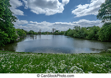 hampstead heath park - the hampstead heath park in London...