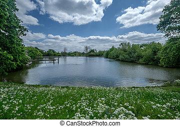 hampstead heath park - the hampstead heath park in London...