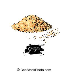 Ginger root powder vector hand drawn illustration. Artistic styl