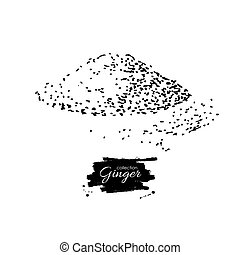 Ginger root powder vector hand drawn illustration. Engraved styl