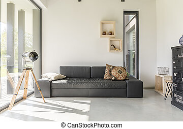 Living room with black furniture - White living room with...