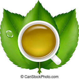 Green Tea With Fresh Green Leaves, Isolated On White...