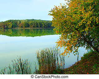 beautiful lake in the forest in autumn - beautiful autumn...